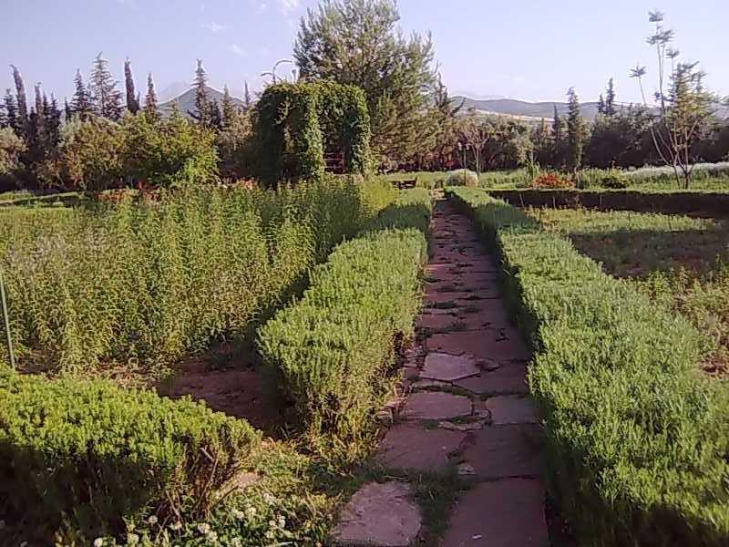 Jardin Bio Aromatique Ourika We Modern Flaneurs We Modern Flaneurs