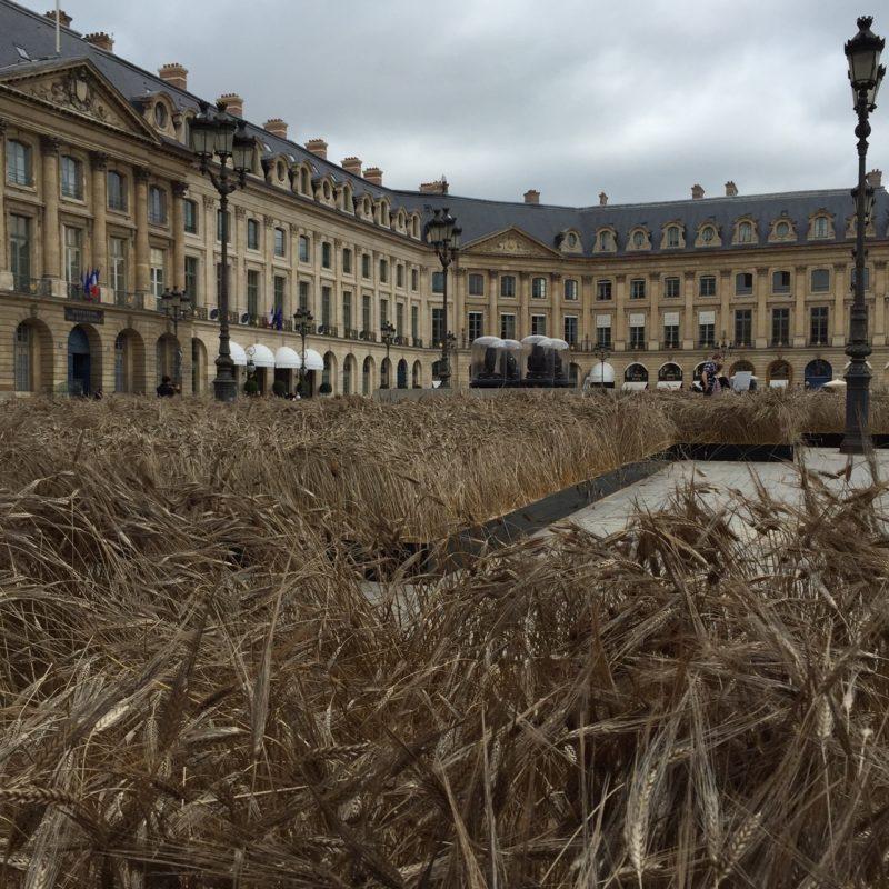 Paris place Vendome bles Chanel