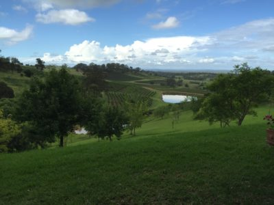 Bistro Molines Hunter Valley